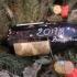 HAPPY NEW YEAR 2018 - BONNE...
